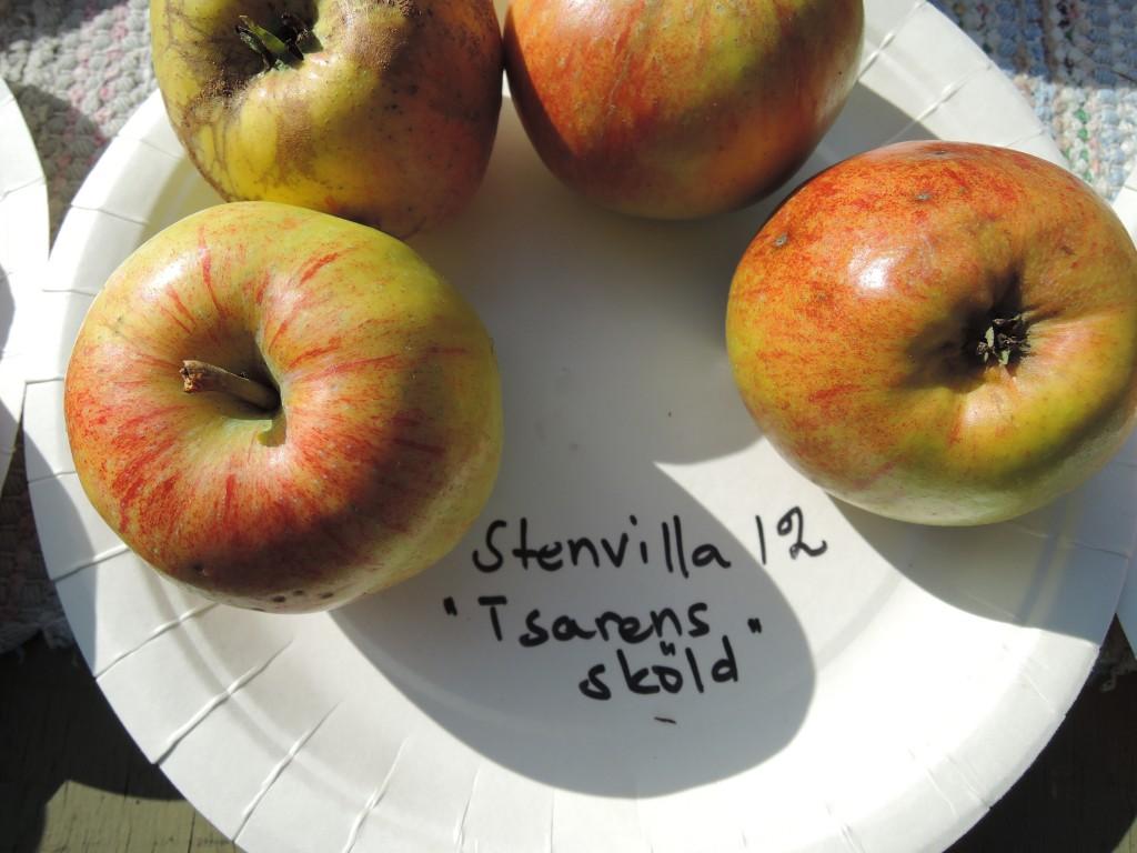 Stenvilla12_0272
